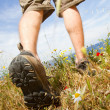 Trekking shoes — Stock Photo