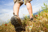 Trekking shoes — Stock Photo