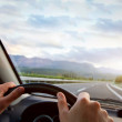 Driving car — Stock Photo #29487699