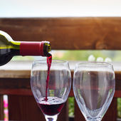 Red wine and two glasses — Stock Photo