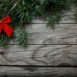 Christmas fir tree  background — Stock Photo