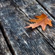 Autumn leave on a wooden background — Stock Photo