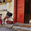 Bicycle and cat — Stock Photo