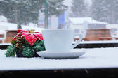 A cup of tea in the snow — ストック写真