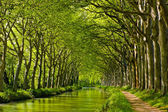 Spring look on Canal du Midi — Stock Photo