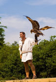 Falconer — Stock Photo