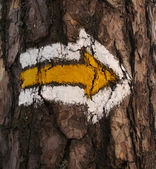 Hiking Sign — Stock Photo