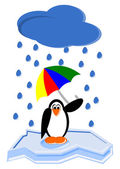Cartoon Penguin — Stock Photo
