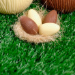 Easter eggs hunt detail — Stock Photo