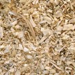Sawdust animal bedding (Texture) - Stock Photo