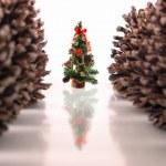 Christmas pine tree and cones — Stock Photo
