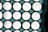 Egg white — Stock Photo