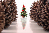 Christmas pine tree and cones — Stock fotografie