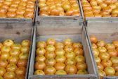 Oranges and crates — Stock Photo