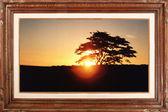 Sunset (Gallery serie) — Stock Photo