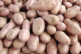 Pink Potatoes — Stock Photo
