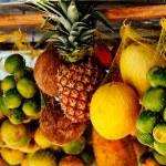 Hung tropical fruits — Stock Photo