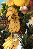 Hung tropical fruits — Stock Photo