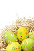 彩色的复活节蛋入巢 — 图库照片