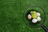 Grupo de huevos de pascua encontrados — Foto de Stock
