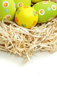 Colored Easter eggs into a nest from top — Stok fotoğraf