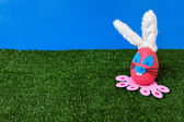 Bunny egg on garden — Foto Stock