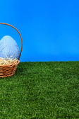Blue Easter eggs hunt from side — Foto Stock