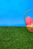 Easter eggs hunt from side — Foto Stock