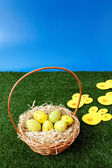 Easter eggs hunt with bunny tracks — Foto Stock