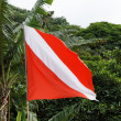 Stock Photo: Dive flag
