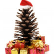 Christmas pine - Focus on gifts — Stock Photo #19579265