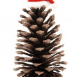 Christmas pine cone and xmas hat — Stock Photo