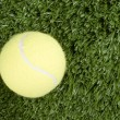 Tennis ball and grass — Stock Photo