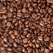 Coffee beans - Medium — Stock Photo