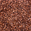 Coffee beans - Small — Stock Photo