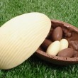 Easter egg white and brown - Stock Photo