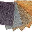 Stock Photo: Color Carpet Samples