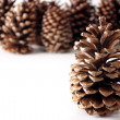 Christmas Pine Cones — Stock Photo #22874700