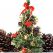 Adoration - Christmas Tree — Stock Photo