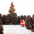 Christmas tree here I go! — Stock Photo #22874710