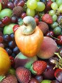 Frutas frescas — Foto de Stock