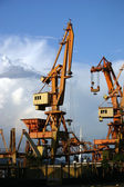Cranes in the harbour — Stock Photo