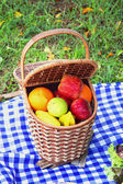 Picnic basket outdoor — Stock Photo