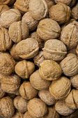 Christmas walnuts — Stock Photo