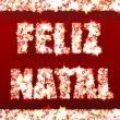 Feliz Natal - Merry Christmas — Photo