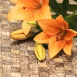 Orange lily with decorations — Stock Photo