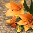 Orange lily with decorations — Stock Photo #19717331