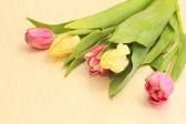 Tulips on a table — Stock Photo