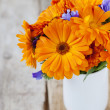 Stock Photo: Calendulas