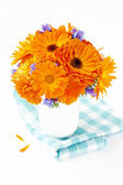 Bunch of orange flowers on white background — Stock Photo